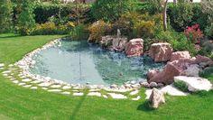 Vasca Da Giardino In Pvc.28 Fantastiche Immagini Su Laghetto Nel Giardino Backyard