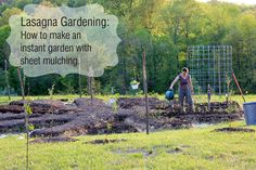 Lasagna Gardening: How to Make an Instant Garden with Sheet Mulching - From Scratch Magazine