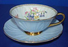 Shelley Wild Flowers / Blue Oleander