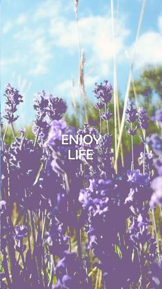 Enjoy life | iPhone wallpaper