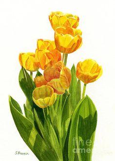 Yellow Tulips In The Sun Print By Sharon Freeman