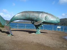 A bronze sculpture of a southern right whale on Recherche Bay in Tasmania.