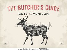 Cut of meat set. Vintage typographic hand-drawn deer silhouette for butcher shop, restaurant menu, graphic design. Meat And Potatoes Recipes, Meat Recipes For Dinner, Easy Meat Recipes, Stuffed Shells With Meat, Meat Store, Meat Restaurant, Butcher Shop, Meat Butcher, Meat Loaf Recipe Easy