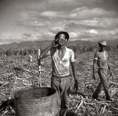 January 1938. Agricultural workers on a sugar plantation near Ponce, Puerto Rico. Photoby Edwin Rosskam. Source Shorpy