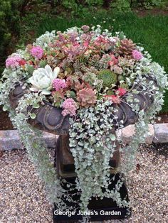 Garden design Garden Art, Garden Design, Garden Features, Succulents Garden, Floral Wreath, Backyard, Wreaths, Plants, Outdoors