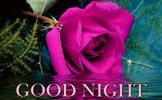 Beautiful Good Night Wishes Images Pics Wallpaper for Whatsapp - Good Morning Images Good Night Photo Images, Beautiful Good Night Images, Night Pictures, Pictures Images, Images Gif, Good Night Meme, Good Night Quotes, Good Night Blessings, Good Night Wishes