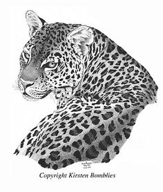 African Leopard - Painting Art by Kirsten Bomblies - Nature Art & Wildlife Art - Wildlife and other natural subjects in Ink, watercolor and acrylic - Bomblies Art Snow Leopard Drawing, Tiger Drawing, Animal Sketches, Animal Drawings, African Animals, African Art, Jaguar Tattoo, Big Cat Tattoo, Leopard Tattoos