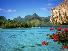 beautiful landscapes - Google Search