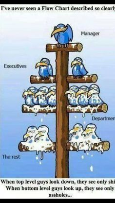 When top level guys look down, they see only shitheads. When bottom level guys look up, they see only assholes. Never seen a Flow Chart described so clearly. Humor Grafico, Work Humor, Best Funny Pictures, Funny Images, Work Pictures, Funny Photos, I Laughed, Smurfs, Funny Jokes