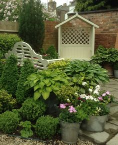 Top patio with hostas