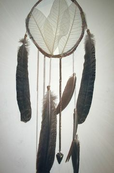 dreamcatcher: Prongs of the feather.