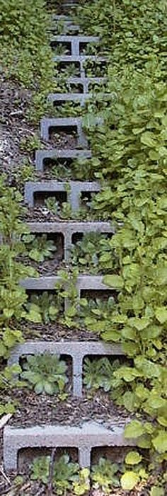 5 Ways to Use Cinder Blocks in the Garden • Lots of creative projects, ideas and tutorials! Including, from 'sustainable urban living', these fabulous concrete block steps.: