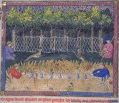 Muckley 1386 Hunting Gaston Phoebus' Book of Hunting Circa 1400 Catching Hares