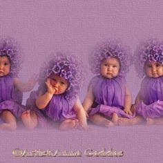 Anne Geddes in the spotlight, Pretty Baby Photos Funny Baby Photos, Cute Baby Pictures, Pretty Pictures, Anne Geddes, Cute Kids, Cute Babies, Purple Baby, Baby Love, Pretty Baby