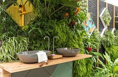 Vertical garden in 'Here and Now' show garden, Melbourne. Design Phillip Withers Landscape Design