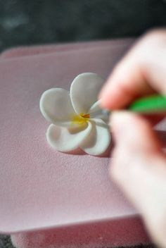 How to make a fondant frangipani flower - cake decorating tutorial