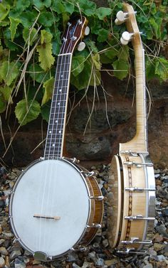 2 Davidson Instruments Banjoleles - either can be the Ukulele of the day they are beautiful