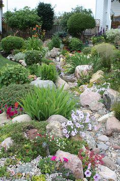 Rock garden idea