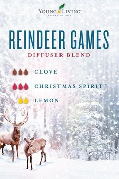Youll be shouting out with glee once you try this holiday diffuser blend! To create our Reindeer Games essential oil blend you'll need 3 drops of Clove 3 drops of Christmas Spirit and 2 drops of Lemon essential oils. Essential Oils Christmas, Patchouli Essential Oil, Essential Oil Perfume, Essential Oil Diffuser Blends, Doterra Essential Oils, Young Living Essential Oils, Yl Oils, Clove Essential Oil, Reindeer Games