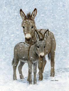 Donkeys Vertical Flag