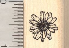 Smallest Daisy Rubber Stamp Flower * You can get more details by clicking on the image.