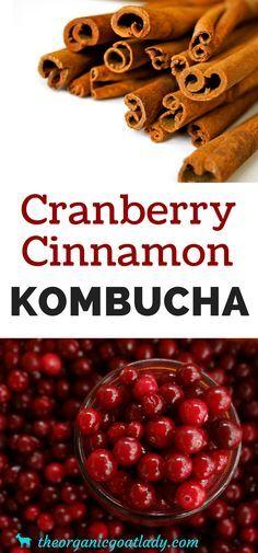 Cranberry Cinnamon Kombucha! How to make the best Kombucha for the holidays!