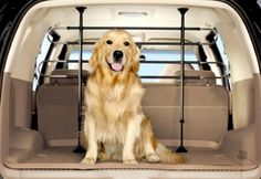 Dog-Proof Your Vehicle: 3 Simple Ways To Keep Your Pup Safe
