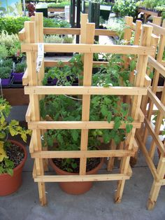 The right tomato cage