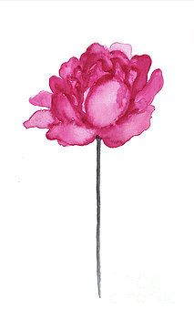 Peony Flower Print, Dark Pink Floral Watercolor Painting by Joanna Szmerdt