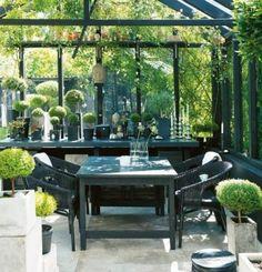 Wintergarten Glasdach Metallkonstruktion Ikebana Baumkunst Rattan-schwarz