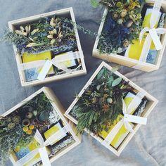 VBR + The Little Shop of Flowers gift box <3