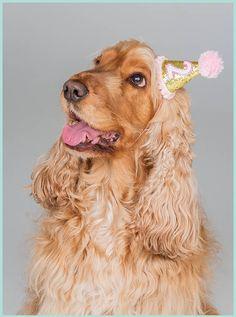 Small glittery birthday hat