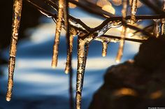 """AccuFan Weather Photo of the Day: Spring icicles in Morristown, N.J., taken on March 26, 2014, by """"elizabethbran."""""""