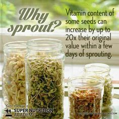Why Sprout