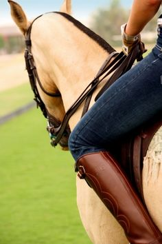 Interesting angle showing rider's leg to horse's neck... I would like to see more of the horse's face and not so much of the rider's knee.