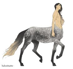 Two appaloosa twins (white boy, brown girl), two gorgeous bros who definitely spends their days braiding each others hair, a hard-working fjord and a very gentle lipizzan girl. Mythical Creatures Art, Mythological Creatures, Magical Creatures, Character Inspiration, Character Art, Character Design, Fantasy Kunst, Fantasy Art, Anime Centaur