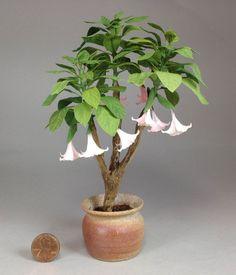 Dollhouse miniature 1/12th scale Angel's Trumpet tree