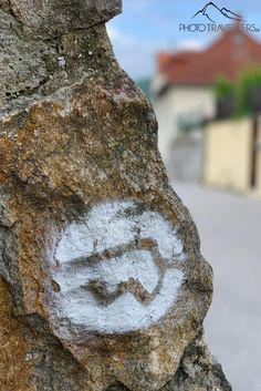 Wachau: Welterbesteig Etappe 1 – von Krems nach Dürnstein Hiking