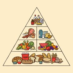 Discover thousands of free-copyright vectors on Freepik Food Pyramid, Food Concept, Different Recipes, Bowser, Healthy Recipes, Healthy Food, Infographic, Vector Freepik, Vectors