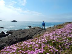 Experience the beautiful landscapes along the California Coast. Hike and wander through the scenic landscape while breathing clean and fresh sea air. A true delight! Crescent City, California Coast, Adventure Tours, Pacific Northwest, North West, Beautiful Landscapes, West Coast, Wander, Hiking