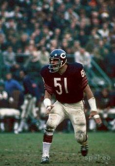 Dick Butkus, Chicago Bears - Who remembers that Jersey? Nfl Bears, Nfl Chicago Bears, Bears Football, Nfl Football Players, Football Memes, School Football, Sports Images, Sports Photos, Professional Football