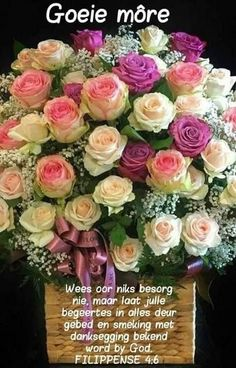 Good Morning Flowers, Good Morning Wishes, Day Wishes, Good Morning Quotes, Lekker Dag, Afrikaanse Quotes, Goeie Nag, Goeie More, Morning Greetings Quotes