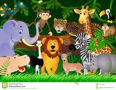 Resultado de imagem para imagens de animais da selva