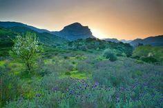 Tramonto sul monte Arcuentu - Arbus -Sardegna