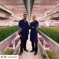 #Repost @microsoft with @repostapp.  Richard Ballard and Steven Dring are not your typical farmers. Beneath the streets of London they built the world's largest subterranean farm. @growing_underground took an abandoned WWII bomb shelter and turned it into a fully-sustainable pesticide-free farm. The duo's mission is to to deliver fresh produce with zero effect on the environment and they're using Microsoft tech to help them accomplish that goal. With their bomb shelter bounty they see the…