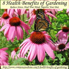 8 Health Benefits of Gardening - Reduce Stress, Heal Your Mind, Improve Your Diet