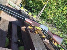 Henry Big Boy Steel 44 Mag Review - Gunners Den Henry Rifles, 44 Magnum, Muzzle Velocity, Iron Sights, Firearms, Shotguns, Lever Action, Big Guns, Hunting Rifles