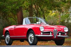 Displaying 1 - 15 of 21 total results for classic Alfa Romeo Giulietta Vehicles for Sale. Alfa Romeo Giulietta Spider, Alfa Romeo Spider, Us Cars, Sport Cars, Car Signs, Vintage Air, Vintage Signs, Alfa Romeo Cars, Chevy Chevrolet
