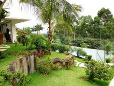 Desert Landscaping Backyard, Plantas Bonsai, Wonderful Flowers, Farmhouse Plans, Tropical Garden, Decoration, New Homes, Exterior, House Design