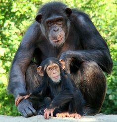 Momma Akati and her son Ajua